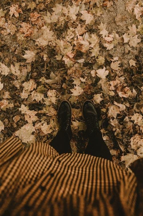 cuadros vichy otoño 2019