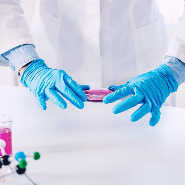 La biotecnología textil
