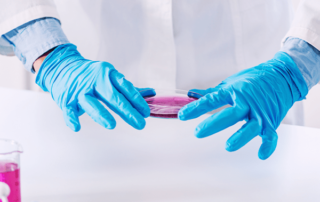 Biotecnología textil