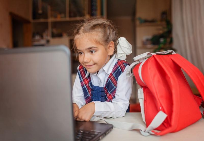 telas vichy uniformes escolares
